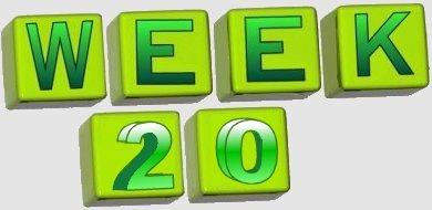 taalverhaal spelling groep 8 week 20