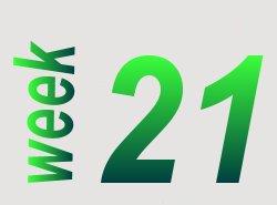 Spelling in beeld groep 6 week 21