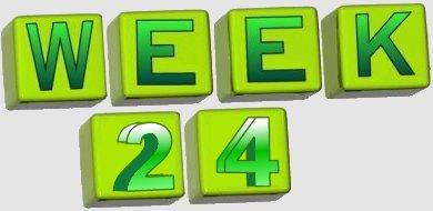 taalverhaal spelling groep 8 week 24