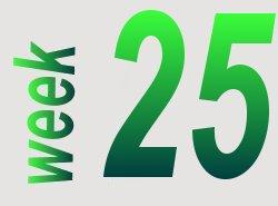 taalverhaal spelling groep 8 week 25