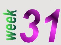 taalverhaal spelling groep 6 week 31