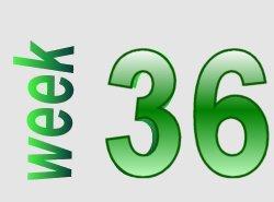 Spelling in beeld groep 5 week 36