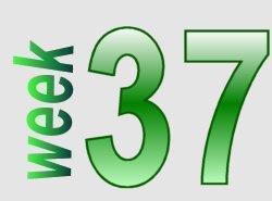 taalverhaal spelling groep 7 week 37
