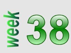 taalverhaal spelling groep 6 week 38