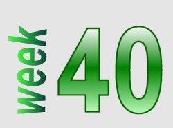 Spelling in beeld groep 6 week 40